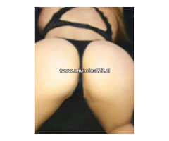 51347792  videos llamadas  chat erotico   para satifacer tu necesidades